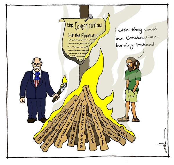 constitution_burning3